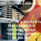 Professional Painter for a reasonable price (20 years of experience)