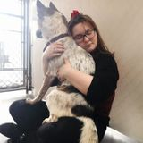 Loving and Patient Pet/Home Sitter