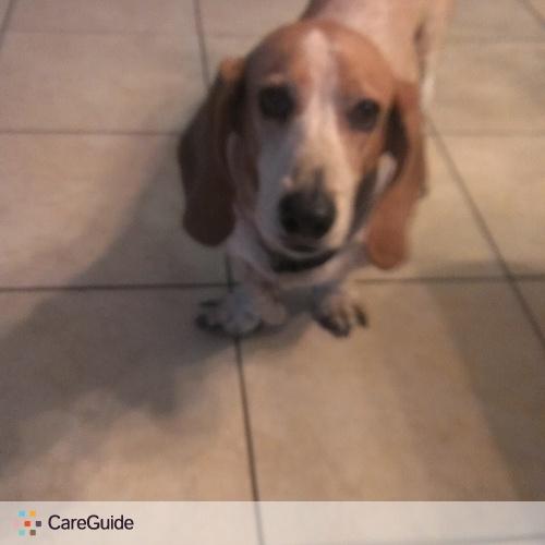 Pet Care Provider Alex Nieto's Profile Picture