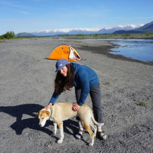 Pet Care Provider Anja M Gallery Image 1