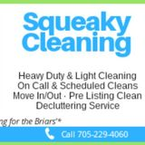 Local Housekeeping Services