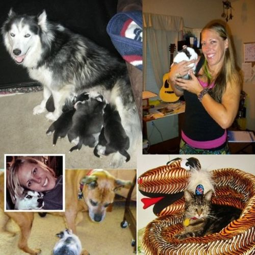 Pet Care Provider Holly R's Profile Picture