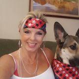 Seeking Phoenix Pet Sitter, Arizona Jobs