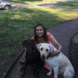 For Hire: Well Trained Petsitter in Charlotte