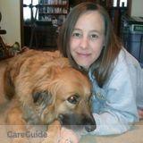 Dog Walker, Pet Sitter in Mocksville
