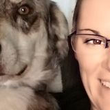 Available: Hardworking Pet Sitter in Seabrook