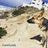Dog Walker in San Clemente