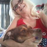 Experience Prescott Pet and House Sitter
