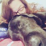 Wake Forest, North Carolina Dog Boarder/Walker/Pet Sitter/Doggie Daycare