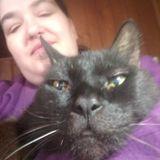 Jackson, Tennessee Animal Caregiver