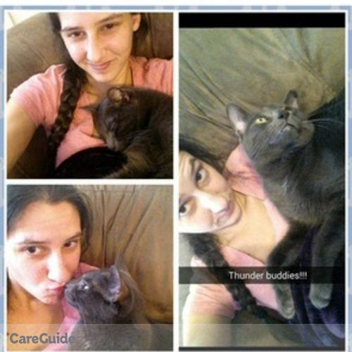 Pet Care Provider Brook Brown's Profile Picture