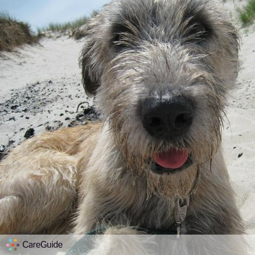 Pet Care Provider Jennifer Kreifels's Profile Picture