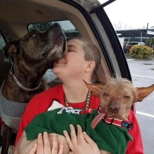 Pet Care Provider Samantha J's Profile Picture