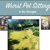 Available For a Pet Sitter Opportunity in New Braunfels
