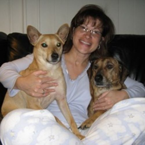 Pet Care Provider Karen Mitchell Gallery Image 2