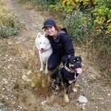Interested In a Dog Sitter Opportunity in Edmonton, Stony Plain, and Spruce Grove