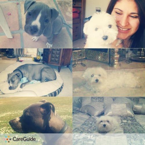 Pet Care Provider Monica Smith's Profile Picture