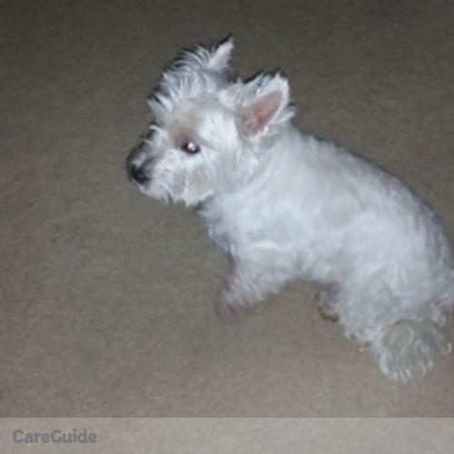 Pet Care Provider Judith Warsaw's Profile Picture