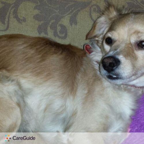 Pet Care Provider Maria Rojas's Profile Picture