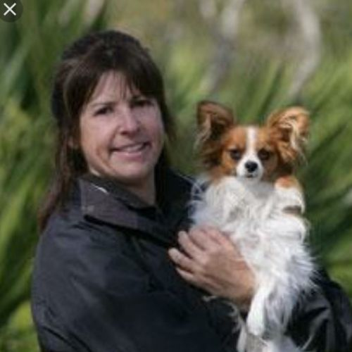 Pet Care Provider Cheri H's Profile Picture