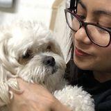 Loving Dogs in Fullerton