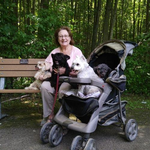 Pet Care Provider Deborah D's Profile Picture