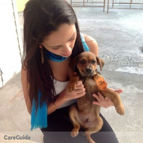 Pet Care Provider Andreia Silva's Profile Picture