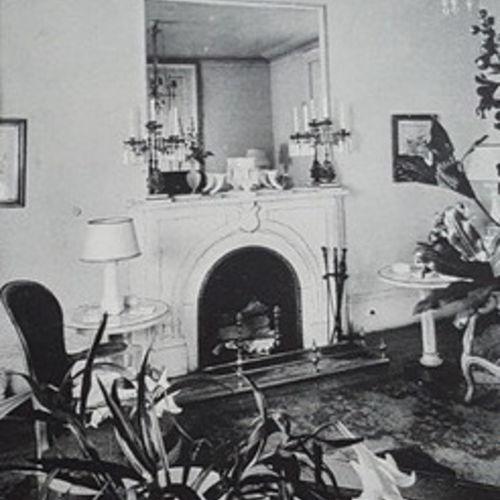 House Sitter Provider Caroline Kittredge's Profile Picture