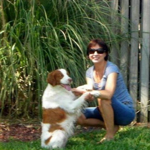 Pet Care Provider Iryna N's Profile Picture