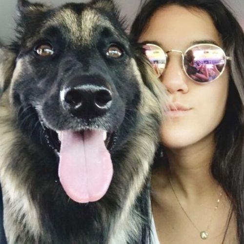 Pet Care Provider Alayna F Gallery Image 3
