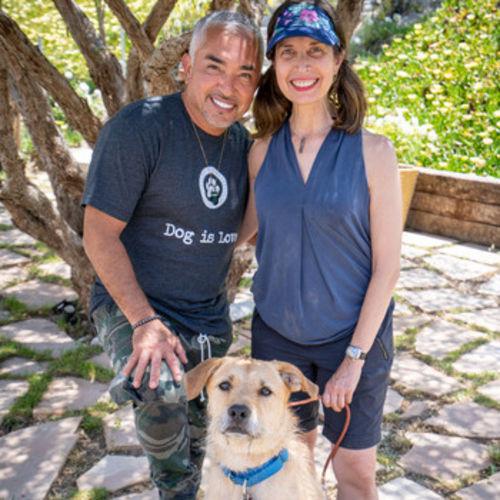 Pet Care Provider Cousin Anne Y's Profile Picture
