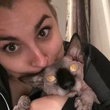 Looking for someone to watch your fur babies I'm your gal!
