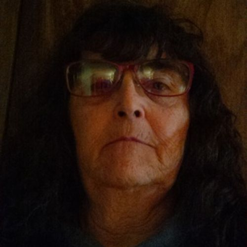 House Sitter Provider Kathy DeGonia's Profile Picture