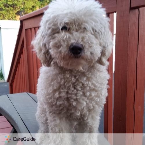 Pet Care Provider Johnny G's Profile Picture