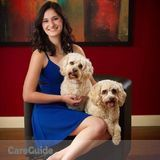 Dog Walker, Pet Sitter in Sellersville