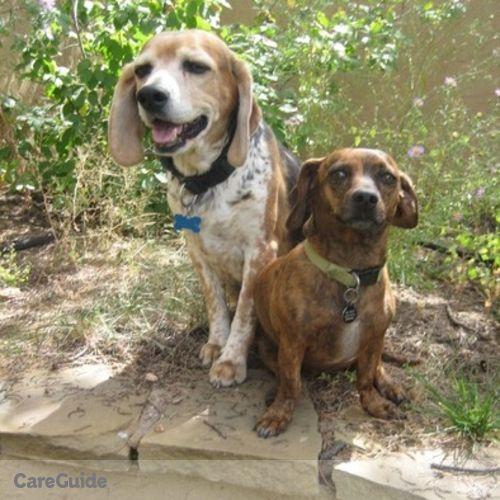 Pet Care Job Ghita Hunter's Profile Picture