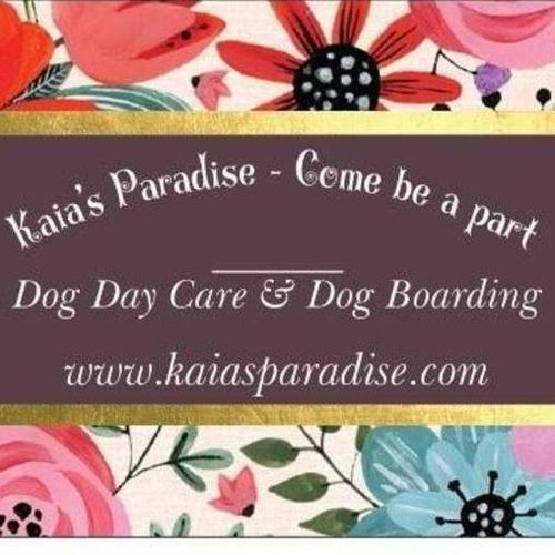 Pet Care Provider Kaia's Paradise's Profile Picture