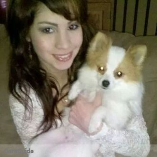Pet Care Provider Amanda Hernandez's Profile Picture