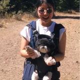 Well Trained Pet Care Provider in La Jolla, California
