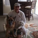 Experienced pet sitter for cats and dogs and ry dependable with references.