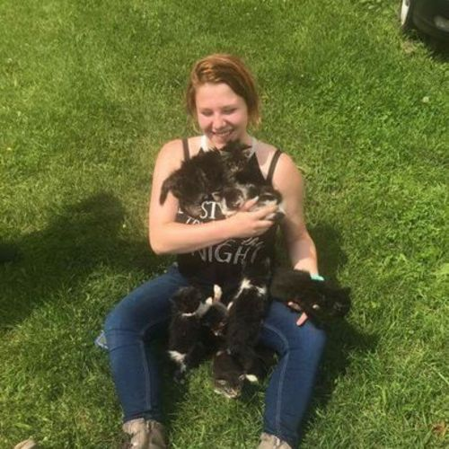 Pet Care Provider Alisha Spruit Gallery Image 2