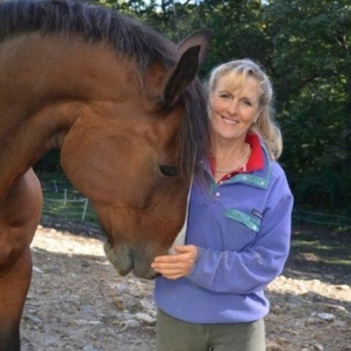 Pet Care Provider Marty W's Profile Picture