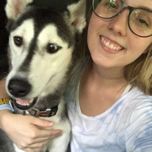 Hardworking Dog Sitter Available Immediately. Hello, my name is Kylie I am an animal science major at Wilmington College.