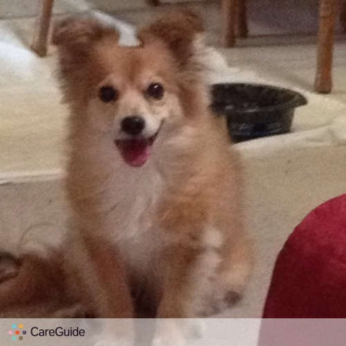 Pet Care Provider Erin Admire's Profile Picture