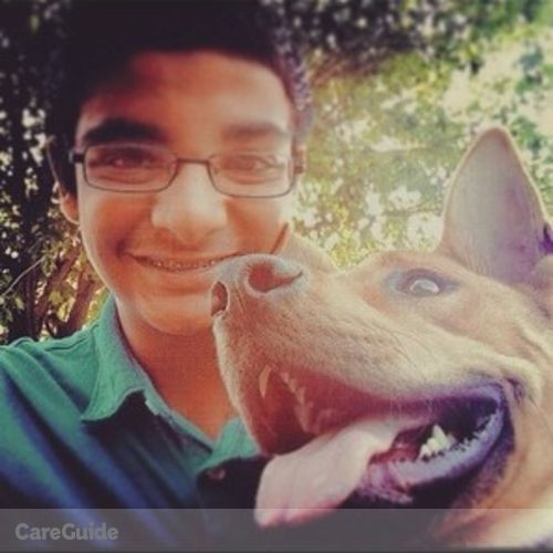Pet Care Provider Karan Patel's Profile Picture