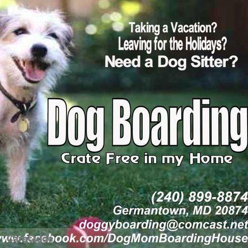 Pet Care Provider DogMoms Boarding House's Profile Picture