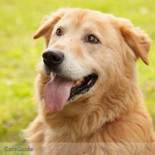 Pet Care Job Anne D's Profile Picture