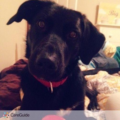 Pet Care Job Shiori Maeda's Profile Picture