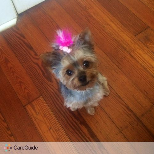 Pet Care Provider Gina Lobianco's Profile Picture