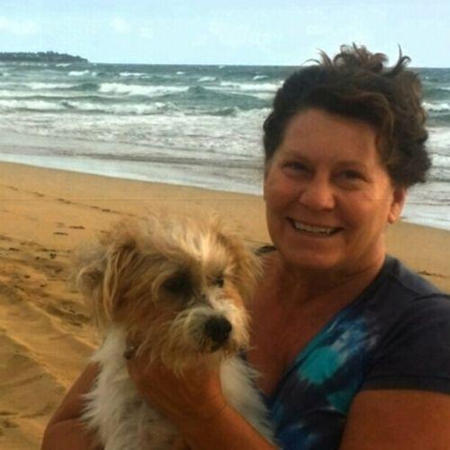 Pet Care Provider Holly M's Profile Picture